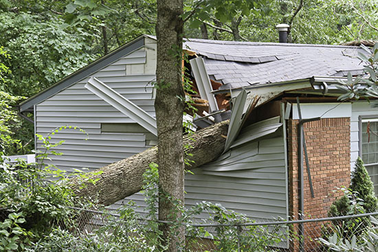 What kind of damage can your roof get from a Pacific Northwest storm?